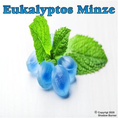 Shadow Burner Aroma Eukalyptus Minze (10 ml)