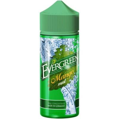 Evergreen Aroma Mango Mint