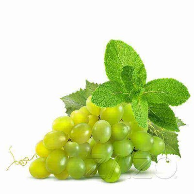 ZAZO E-Liquid Grape Mint (Weintraube/Minze)