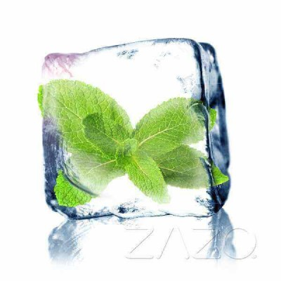 ZAZO E-Liquid Cool Mint