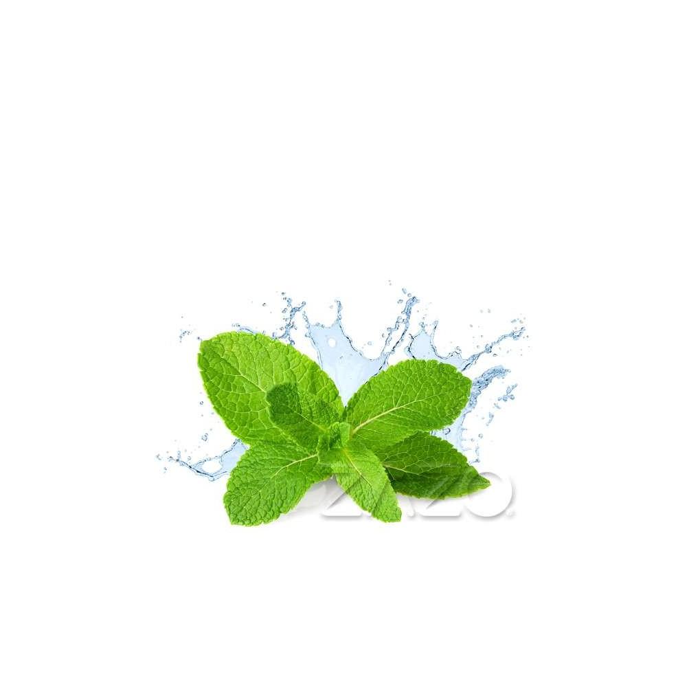 ZAZO E-Liquid Fresh Mint