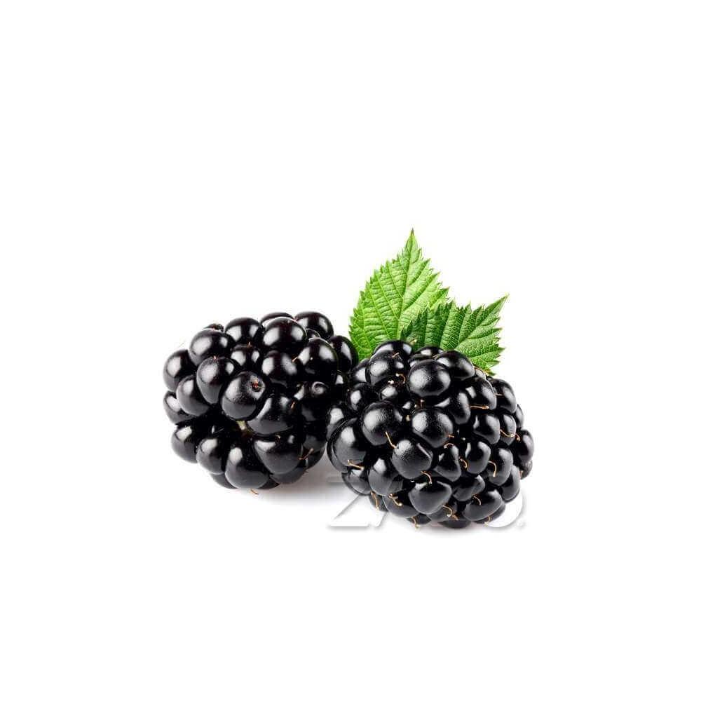 ZAZO E-Liquid Blackberry (Brombeere)