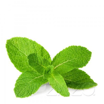 ZAZO E-Liquid Mint