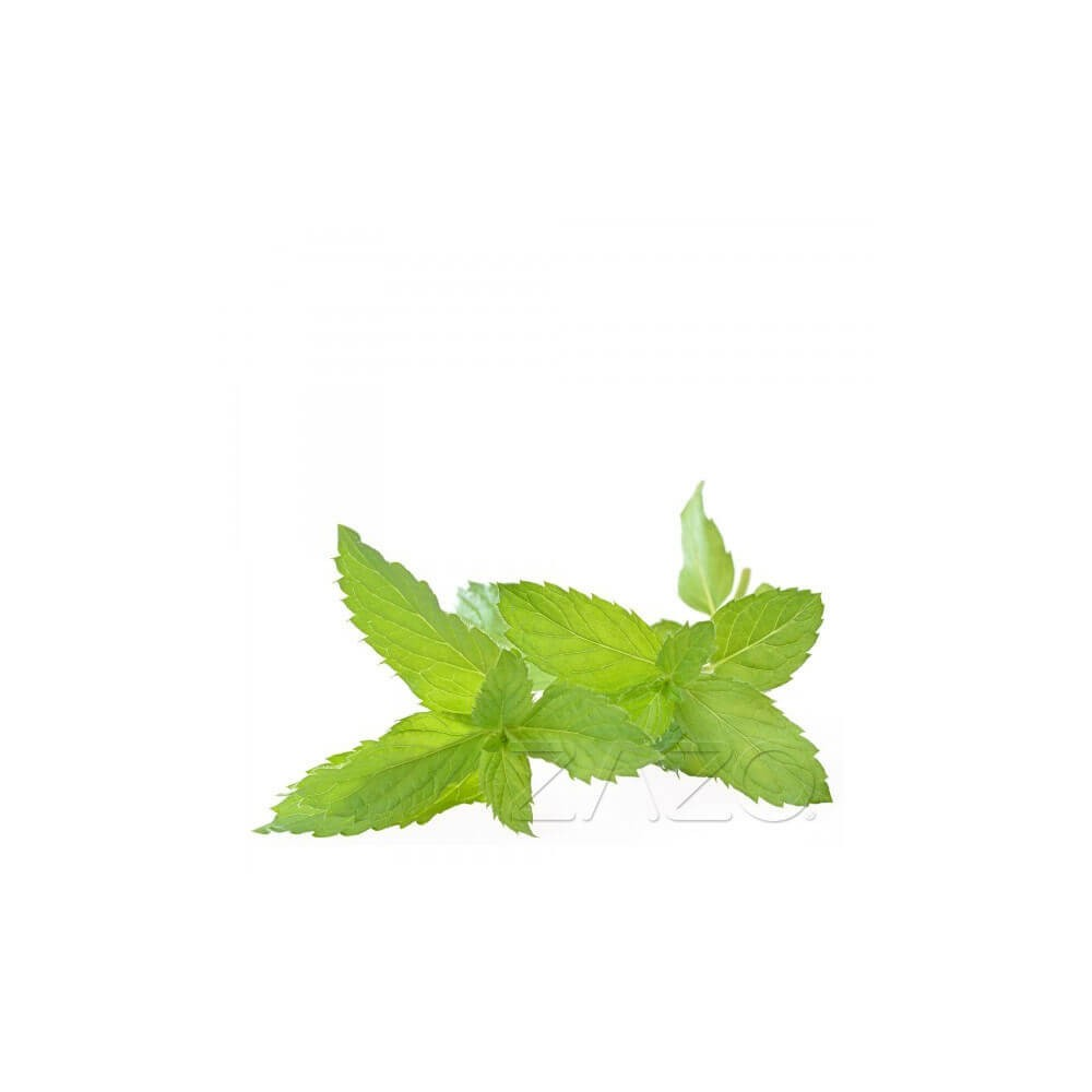 ZAZO E-Liquid Peppermint