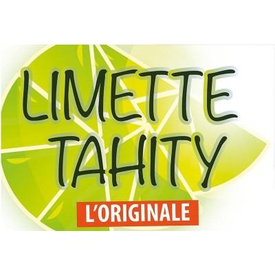 Flavour Art Limette Tahity Aroma (10 ml)